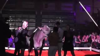 Download GP von Sargans16 Final Championwahl Video