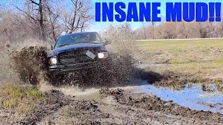 Download MUDDING WITH LIFTED TRUCKS IN THE BEST MUD Video