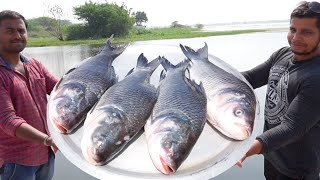 Download 50 POUND BIG FISH DEEP FRY || 4 FRESH FISHES FRYING IN A BIG PAN IN WILD Video
