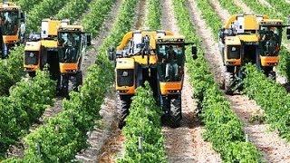 Download Pellenc Optimum Grape Harvester Video