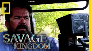 Download Death of a Leopard Cub (Behind the Scenes) | Savage Kingdom Video