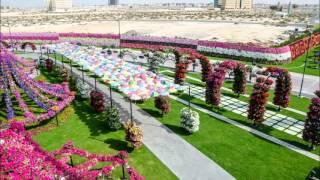 Download Dubai Miracle Garden Video