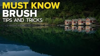 Download Lightroom Brush Tips You NEED to Know Video