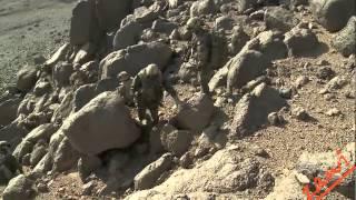 Download L'armée française déloge les terroristes d'aqmi dans le massif de l'Adrar Video
