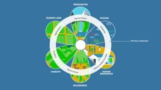 Download The Blue Bioeconomy Video