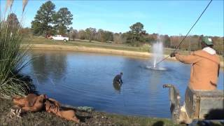 Download Vehicle Recovery In A Pond. Video