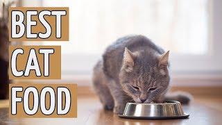Download ⭐️ Best Cat Food: TOP 15 Cat Foods of 2018 ⭐️ Video