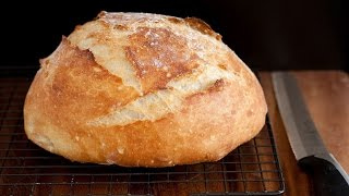 Download No Knead Artisan Bread Video