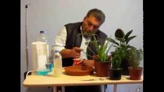 Download Böceklere karşı organik ilaç nasıl yapılır ? Video