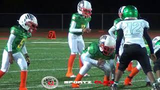 Download Atlanta Ducks 8U vs Tucker Lions | Youth Ballers Video