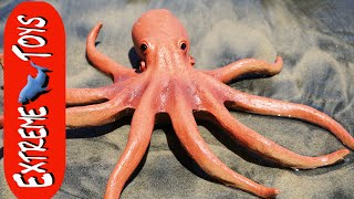 Download The Octopus Stow Away! Mysterious Squid Toy Sea Creature on the Beach. ″Part 1″ Video