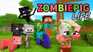Download Monster School : Enderman's Life Part 5 with ZOMBIE PIGMAN's Life - BEST Minecraft Animation Video