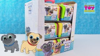 Download Disney Junior Puppy Dog Pals Travel Pets Blind Bag Toy Review | PSToyReviews Video