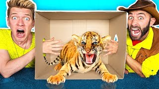 Download What's in the BOX Challenge!! **LIVE ANIMALS** Gross Giant Slime Orbeez & Real Food vs. Gummy Food Video