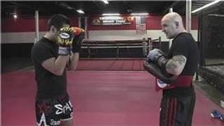 Download Kickboxing Training : Basic Kickboxing Techniques Video