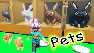Download Hamsters In The House - Roblox Animal House Pets - Online Game Let's Play Random Fun Video Video