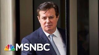 Download Rudy Giuliani And Sarah Huckabee Sanders Respond To Paul Manafort Plea Deal | MSNBC Video
