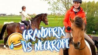 Download VLOG #72 Grand-Prix VS Neckrope rijden!| felinehoi Video
