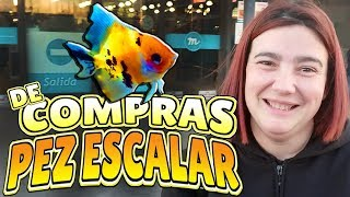 Download 🐠PEZ ESCALAR - Tienda de acuarios 2018 Video