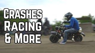Download Mini Bike Mad Men   15+ Bikes, 30HP Mini Bike! Video