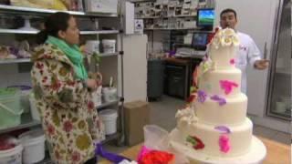 Download Cake Boss - Bruidzilla Verpest Haar Taart Video