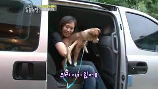 Download 누렁이에서 귀빈으로 해피엔딩 (Dog's Happy Ending) 2 of 2 Video