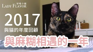 Download 【好味小姐】2017是與麻糊相遇的一年! Video
