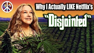 Download Why I Actually LIKE Netflix's 'Disjointed' Video