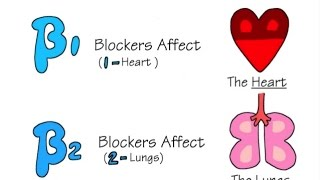 Download Beta Blockers and Asthma/COPD Video