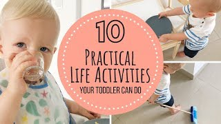 Download Montessori Practical Life Activities | Toddler 12-18 months Video