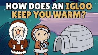 Download How Does an Igloo Keep You Warm? Video