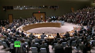 Download UN Security Council unanimously adopts Syrian roadmap resolution (Full video) Video