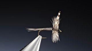 Download Tying the Mosquito midge with Barry Ord Clarke Video