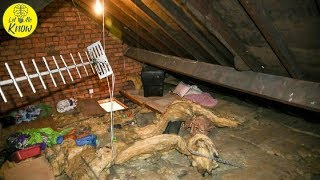 Download Woman Finds Ex Living In Her Attic, 12 Years After Their Breakup Video