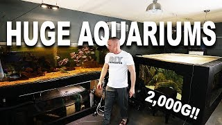 Download MY LARGEST AQUARIUMS Video
