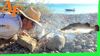 Download CATCH n COOK Salt Lemon Butter Pepper Barramundi Fish on fire at Beach EP.363 Video