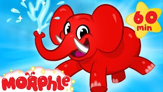 Download My Pet Elephant - Learn to Clean + 1 hour kids Video compilation by My Magic Pet Morphle Video