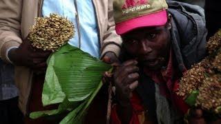 Download مخاوف في كينيا بعد حظر القات في المملكة المتحدة Video
