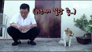 Download 남의 집 강아지같은 우리집 강아지 뽀삐.. (결말 대박)ㅣ Shocking Ending, My Own Dog I Couldn't Even Touch For 7 Years.. Video