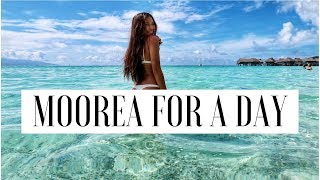 Download MOOREA FOR A DAY (first time at the BEACH) -VLOG 8 Video