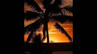 Download Tonga - 'Efiafi Peau Ongo 'i Vale Video