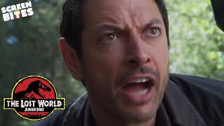 Download The Lost World - Jurassic Park: ″Later there's running, and screaming″ Jeff Goldblum Video