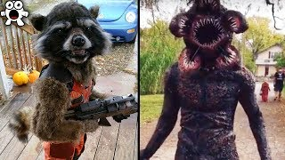 Download Creative Halloween Costumes People Took To The Next Level Video