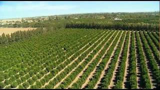 Download Riverina Agriculture Australia by Vince Bucello Video