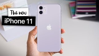 Download iPhone 11: 7 things I LOVE and 7 things I HATE about it Video