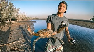 Download YBS Lifestyle Ep 1 - MONSTER MUDCRAB CATCH AND COOK | Sea Snake Encounter Video