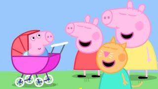 Download Peppa Pig en Español - ¡George el bebé! - Dibujos Animados Video