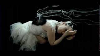 Download Björk - Unravel Video