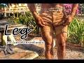 Download ท่าฝึกสร้างกล้ามเนื้อ″ขา″💪💪🔥🔥🔥 (ที่บ้านแบบไม่ต้องง้อใคร) 💪💪🔥🔥🔥 Video