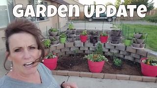 Download ~Garden Catch Up & Chicken Update~ Video